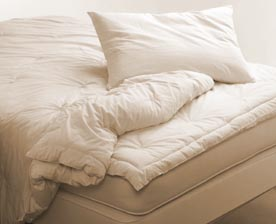 Natural Organic Comforters - 10% off with mattress